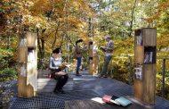 長野県「軽井沢星野エリア」に屋外図書館、日帰り施設にスタッフ厳選の蔵書や「感想文ツリー」など