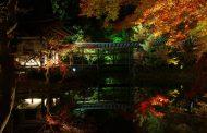 京都・祇園八坂に元料亭を改築した高級ホテルが開業へ、宿泊者限定で高台寺を貸し切り鑑賞も