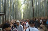 京都・嵐山地区のオーバーツーリズムの実態は? ゴミ問題から現地の温度差まで取材した