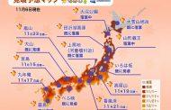 紅葉の見ごろ2018、東・西日本の平野部にシーズン到来、台風の影響で一部名所に影響も -ウェザーニューズ