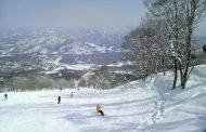 長野県のスキー場、雪不足で3年ぶりに利用者数減少、外国人はアジア系が増加
