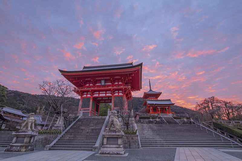 JR東海、朝の京都を体験する新ツアー、一般拝観前の寺院や非公開スポットなど朝の風景で