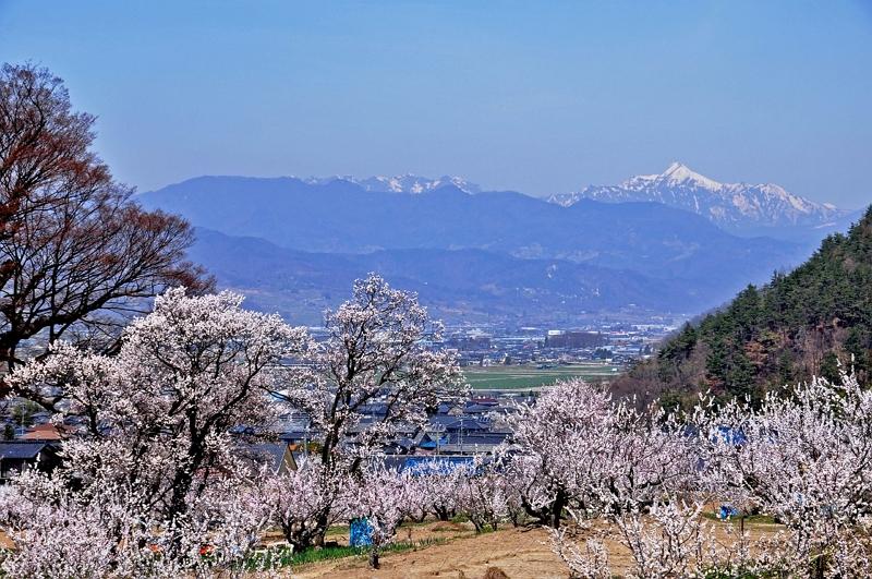 日本人の国内旅行消費額5.3%減、3月が不調、1人あたり単価は微増で3.5万円 ―2019年第1四半期(速報)
