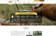 ハワイ州観光局、責任ある観光(レスポンシブル・ツーリズム)を推進、第一弾はハワイ固有種コアの木を植樹するキャンペーン