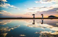 まもなく始まる「瀬戸内国際芸術祭」、香川県が「映え景勝地」をアピール、春は4月26日~5月26日まで開催