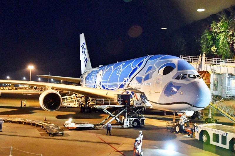 ハワイに就航した超大型機「A380」、そのスケール感から乗り心地、ANAの戦略まで専門家が解説した【写真】