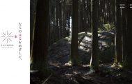 奈良市、東部エリアの観光・民泊の新情報サイトを開設、「もう一食、もう一泊」で観光消費の拡大へ