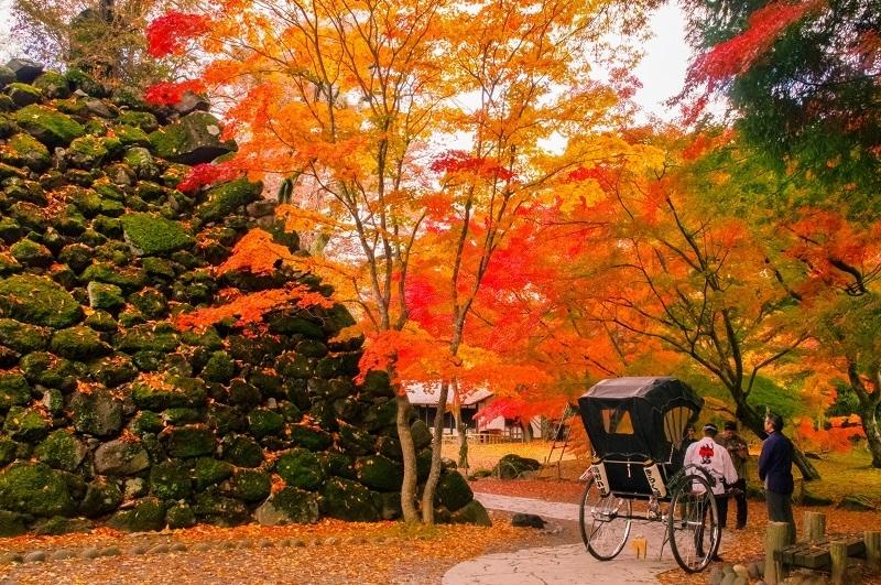 長野県小諸市が「紅葉まつり」開催、台風19号被害から復旧、観光客の受け入れ正常化を呼びかけ