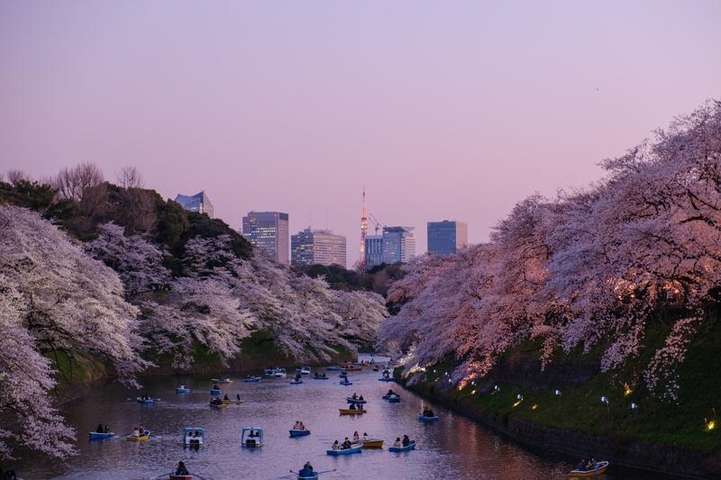 米・大手旅行誌の読者が選んだ「世界で最も魅力的な都市」、東京と京都が2年連続でツートップ、5位に「大阪」