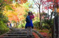 日本人の国内旅行消費額が3%増の6兆6000億円に、日帰り旅行は減少傾向、宿泊付きの旅行単価は5万7412円で微増 ―2019年第3四半期(速報)