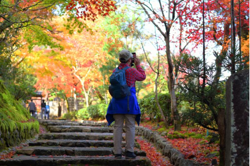 【図解】訪日外国人数が2か月連続で前年割れ、2019年11月は0.4%減の244万人、韓国が65%減 ―日本政府観光局(速報)