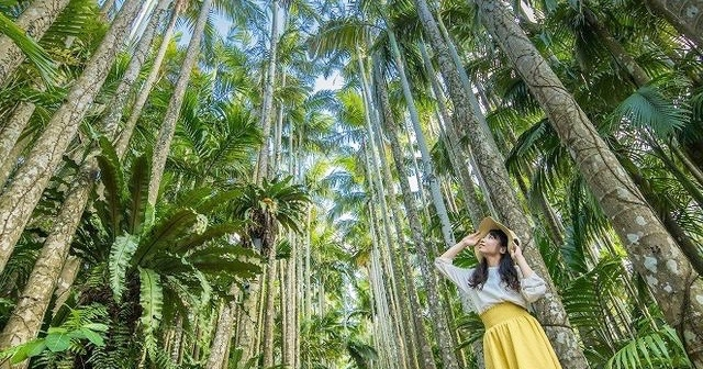 DMMリゾーツ、沖縄「東南植物楽園」と業務提携、新水族館の飼育員教育などで
