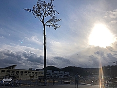 岩手・陸前高田市のレンタカーを半額にする学生割引き、震災9年目の被災地訪問を応援