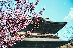経産省、「スマートリゾート」推進事業でシンポジウム、東京で3月17日に開催(PR)