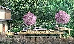星野リゾート、おこもり滞在での花見を提案、1日1組限定の特別プランで
