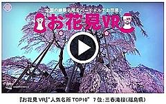 スマホアプリで自宅でも桜鑑賞、「お花見VR」が無料公開、上野公園など50か所以上で360度動画【動画】