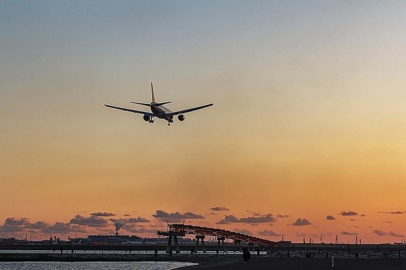 航空各社、お盆期間も厳しい状況続く、ANA・JALとも国内線予約数は60%以上の減少、予約率は30%台にとどまる