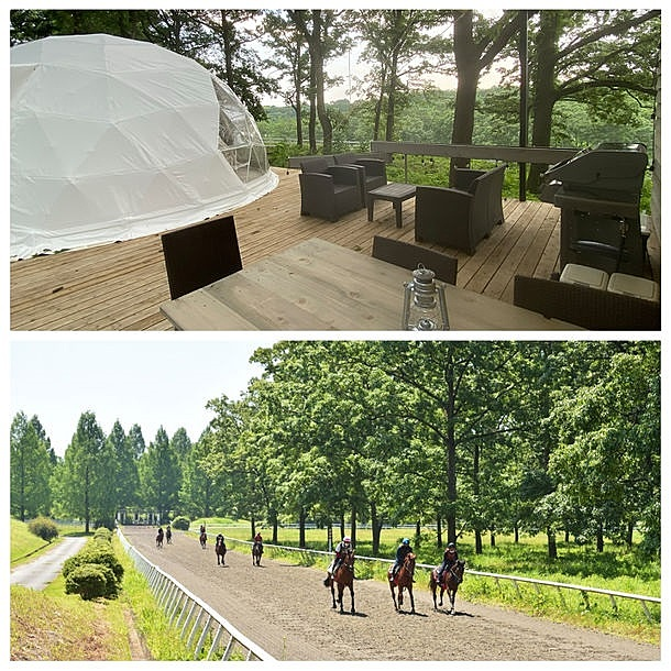 サラブレッド牧場に宿泊するグランピング施設、栃木県に体験型リゾートが開業へ、ドーム型キャビンでBBQメニュー提供