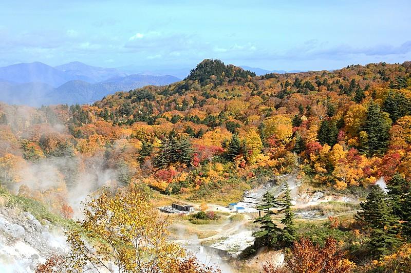 紅葉の見ごろ予想2020、東・西日本は平年並み、高尾山は11月18日頃、京都・嵐山は11月20日頃から
