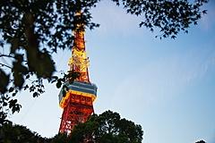 東京発着のGoToトラベル、65歳以上の高齢者と基礎疾患ある人を対象に自粛呼びかけ、12月17日まで