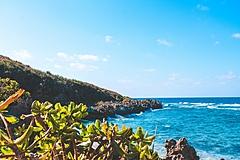 沖縄県への2020年の観光客数は6割減、GoTo再開なら5割まで回復か、プロ野球キャンプに向けPCRセンター開設