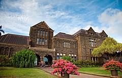 ハワイ州観光局、文化施設のオンラインツアーをライブ配信、文化保護NPOの支援で参加費を全額寄付