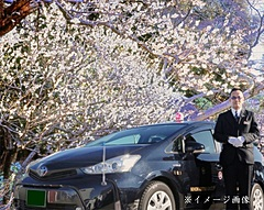 日本交通、タクシーで梅の名所めぐるプラン発売、3時間1万5220円から、プライベート空間で