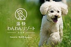 湯快リゾート、愛犬と泊まる温泉旅館を開業へ、石川県片山津温泉で