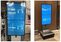南紀白浜空港、「顔認証」決済で電子クーポン導入へ、混雑度のデジタル表示も