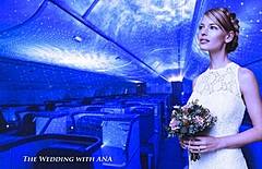 ANA、機内ウエディングを開始、駐機中の国際線を貸し切りで、挙式だけなら155万円