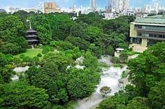 ホテル椿山荘東京内に再生医療専門クリニック開院、オーダーメイド点滴ステイなど高額宿泊プラン提供