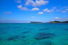 奄美・沖縄が世界自然遺産に正式決定、日本の自然遺産は5件目、亜熱帯の森の生物多様性が評価