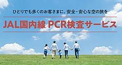 JAL、国内線の利用時のPCR検査を、出発前と帰着後のセットでも、マイルでの支払いも可能