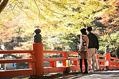 The most desirable thing for Japanese consumers to do after vaccinated is domestic travel, and 10% have already booked travel