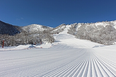 Major ski resorts in Japan make an alliance to attract more skiers