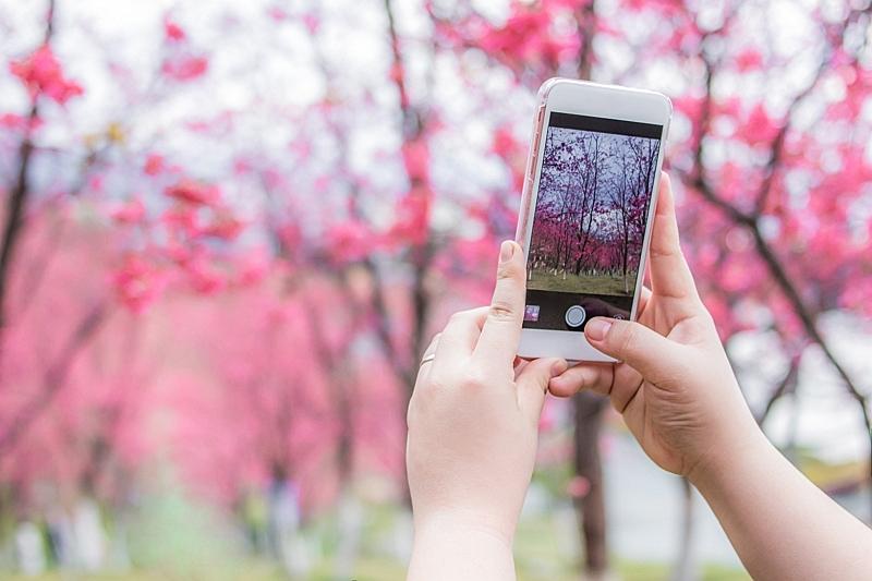 旅行者の位置情報によるデータ戦略に転機、アップル社スマホのプライバシー保護機能強化で、今すぐできる取り組みを考察した【外電】
